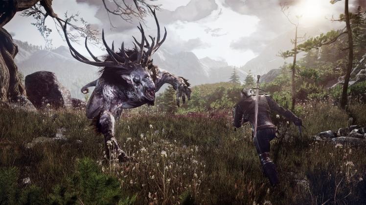 the_witcher_3_wild_hunt_geralt_fighting_the_fiend